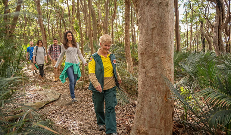 Park visitors follow an NPWS ranger on a guided tour along Bullimah Spur track in Bouddi National Park. Photo: John Spencer/DPIE