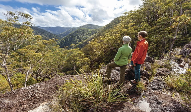 Walkers looking out over the dramatic rainforest, Gibraltar-Washpool World Heritage walk. Photo: Rob Cleary
