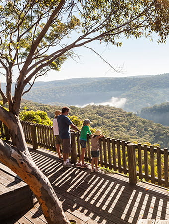 Kalkari lookout, Ku-ring-gai Chase National Park. Photo: David Finnegan