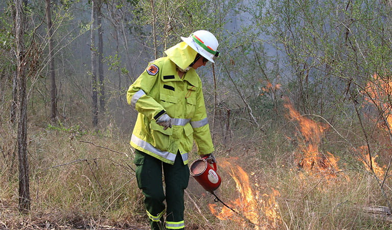 A trainee field officer conducting the Olive hazard reduction burn in Scheyville National Park. Photo: David Croft/DPIE