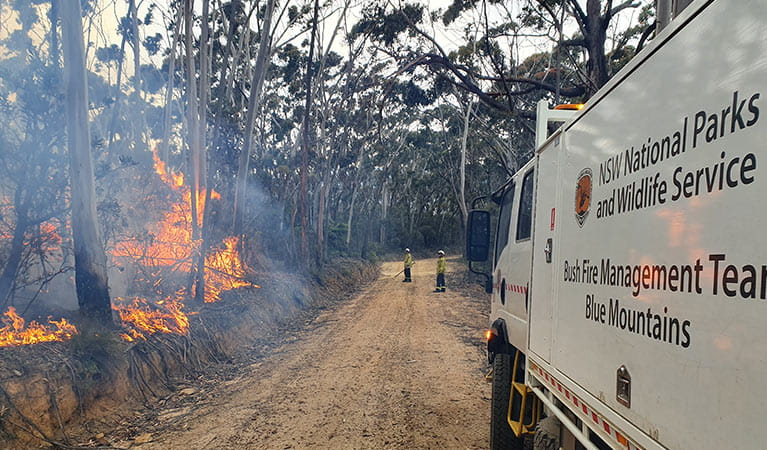 NPWS fire management staff respond to bushfire near Ruined Castle in Blue Mountains National Park. Photo: Tim Johnson/DPIE