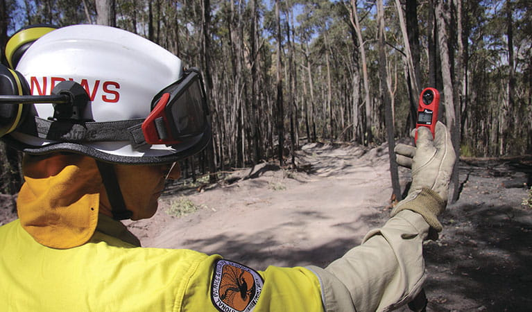 An NPWS senior ranger patrolling a spotover fire spanning Bournda Nature Reserve and private land near Merimbula. Photo: Lucy Morrell/DPIE
