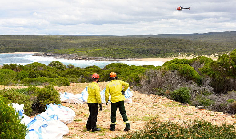 NPWS staff working on an upgrade of The Coast track in Royal National Park. Photo: David Croft/DPIE