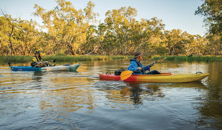 NPWS and DPIE staff conducting bird surveys on kayaks. Photo: John Spencer/DPIE