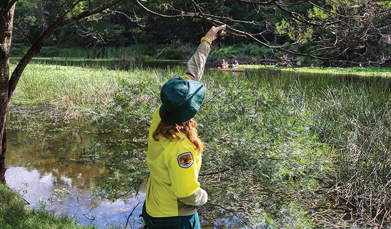 NPWS staff releasing a sacred kingfisher back into the wild. Photo: David Croft/DPIE
