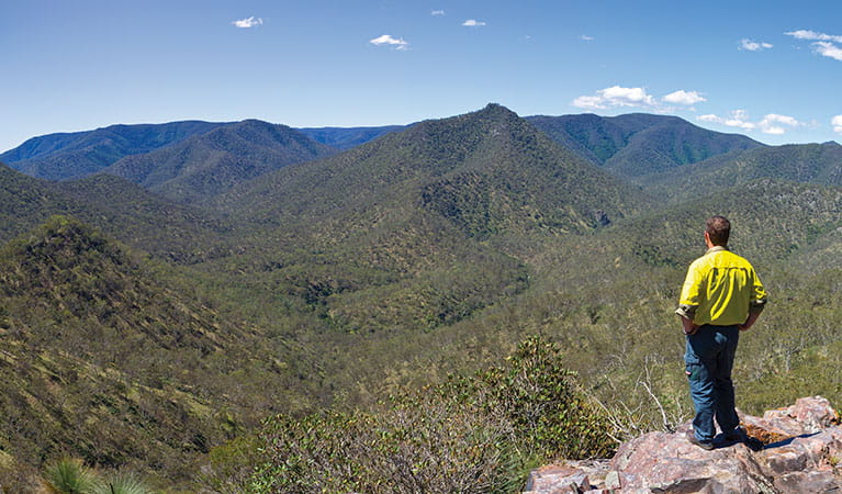 Field officer overlooking the valley, Oxley Wild Rivers National Park. Photo: Rob Cleary/Seen Australia