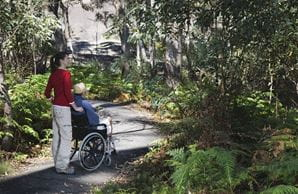 People using a wheelchair accessible track in one of NSW's national parks. Photo: Paul Foley's Lightmoods