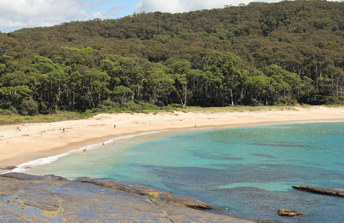 Best South Coast NSW campgrounds | NSW National Parks