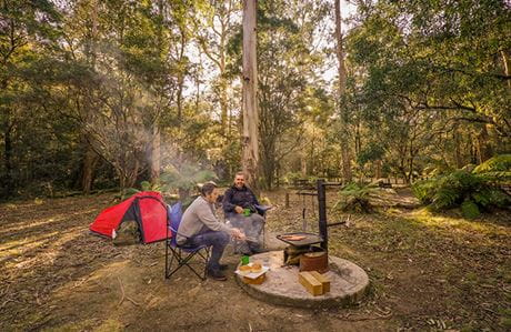 Two men cook sausages on a firering beside a tent, at Thungutti campground in New England National Park. Photo: John Spencer/OEH