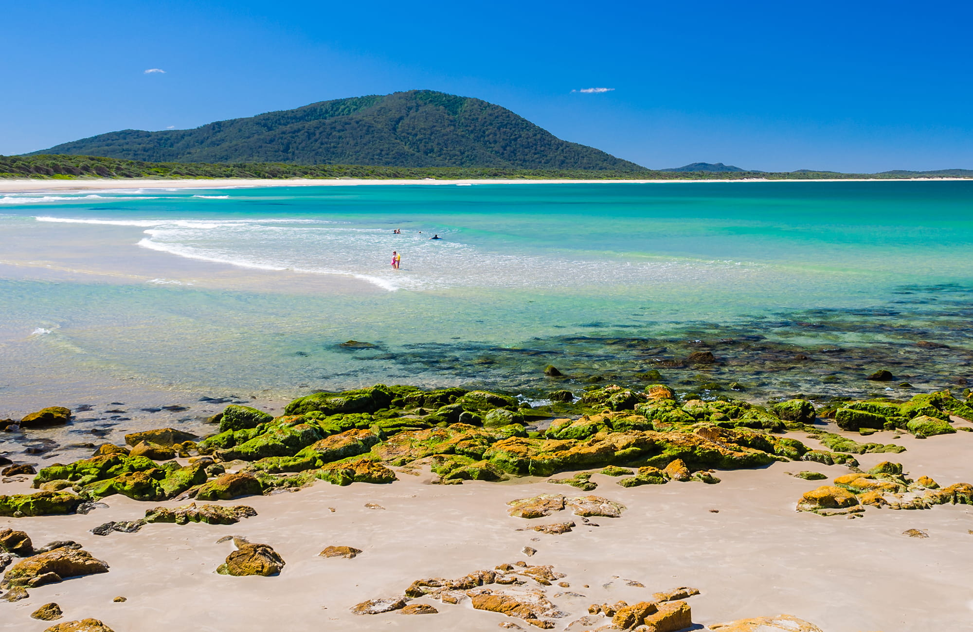Beach Green Crowdy Bay National Park. Photo: Matthew Cramer