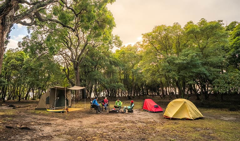 Campers at Bittangabee Bay campground. Photo: John Spencer/OEH