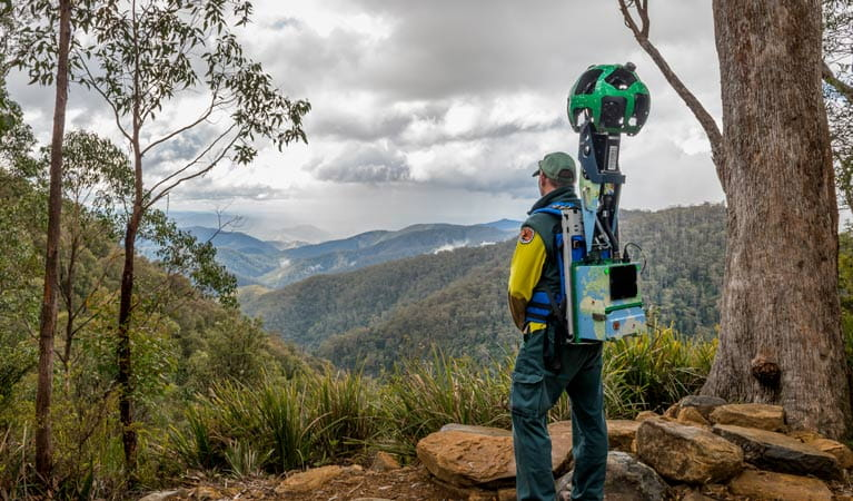 Google Street View trekker in Barrington Tops National Park. Photo: John Spencer