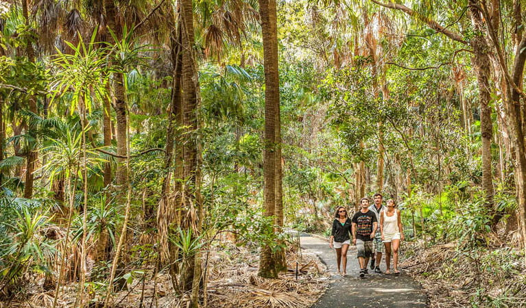 Friends walking along Palm Valley in Cape Byron. Photo: M Vanderveer/OEH