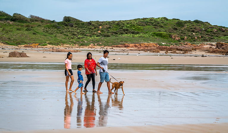A family walks a dog on a lead on a beach. Photo: John Spencer © DPIE