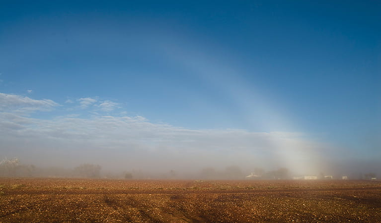 Duststorm over Sturt National Park. Photo: Boris Hlavica