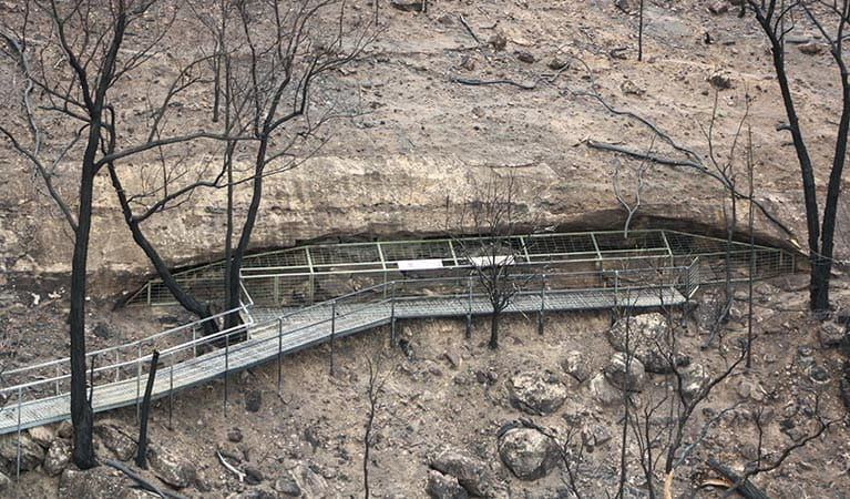 Tara Cave, post fire at Warrumbungle National Park. Photo: Merv Sutherland