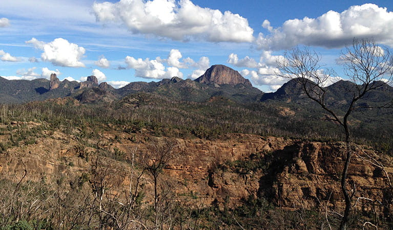 Fire behaviour and the after effects, Warrumbungle National Park. Photo: Elizabeth Tasker