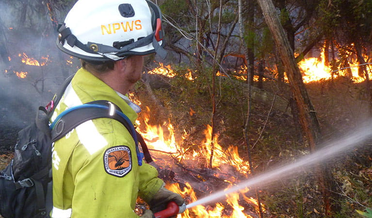 NPWS field officer controlling a hazard reduction burn, Ku-ring-gai Chase National Park. Photo: David Croft