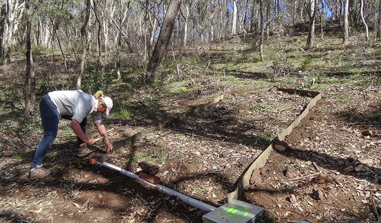 Analysing soil erosion, post fires, Warrumbungle National Park. Photo: OEH
