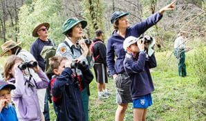 Enjoy birdwatching in Warrumbungle National Park. Photo: Simone Cottrell/OEH.