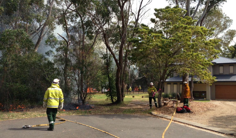 Protecting property from a bushfire, Lane Cove National Park. Photo: Michele Cooper