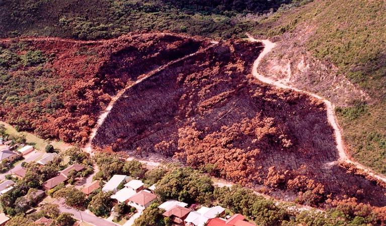 Planned hazard reduction burn to protect property, Tomaree National Park. Photo: OEH