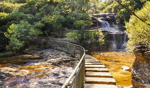 Charles Darwin walk, Blue Mountains National Park. Photo: Steve Alton