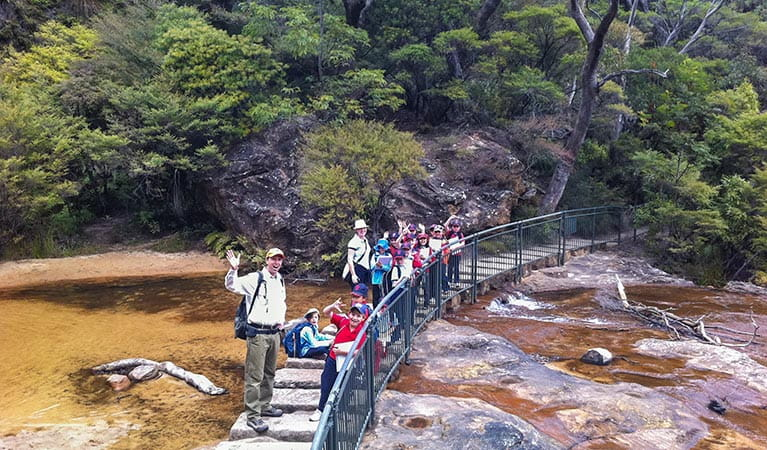 Bush trackers on Charles Darwin walk, Blue Mountains National Park. Photo: OEH