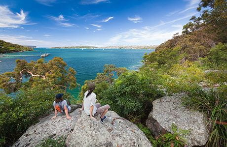 Looking across Sydney Harbour National Park. Photo: David Finnegan