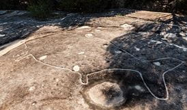 Jibbon Aboriginal rock engravings, Royal National Park. Photo: David Finnegan