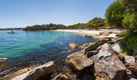 Nielsen Park, Sydney Harbour National Park. Photo: David Finnegan