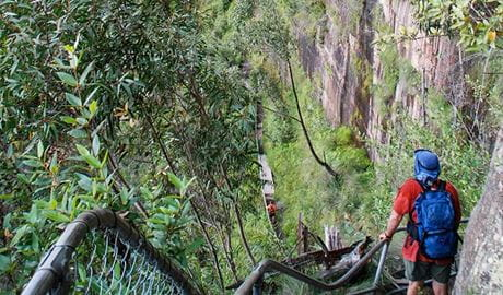 People descending Govetts Leap, Blue Mountains National Park. Photo: Aine Gliddon