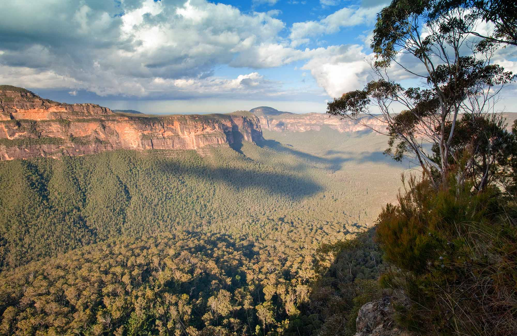 Perrys Lookdown drive, Blue Mountains National Park. Photo: Nick Cubbin