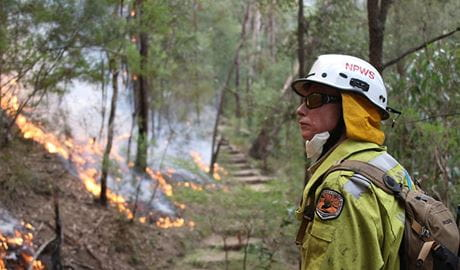 Staff from Metro South West and Blue Mountains regions undertaking the Pisgah Ridge hazard reduction burn near Glenbrook in the Blue Mountains National Park. Photo: David Croft © David Croft/DPIE