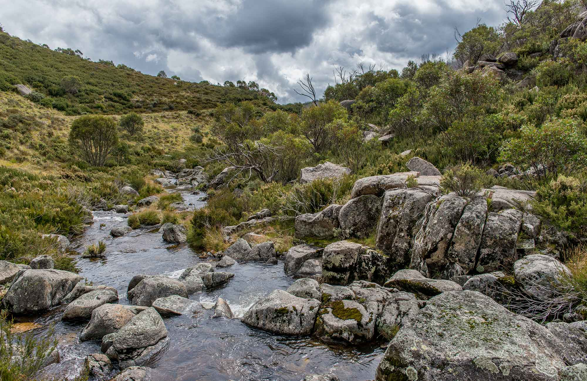 Pipers Creek trail, Kosciuszko National Park. Photo: John Spencer