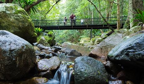 Exploring Minnamurra Rainforest, Budderoo National Park. Photo: David Finnegan