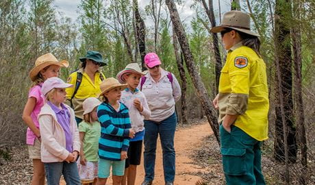 Timallallie Pilliga Discovery tour, Pilliga National Park. Photo: John Spencer