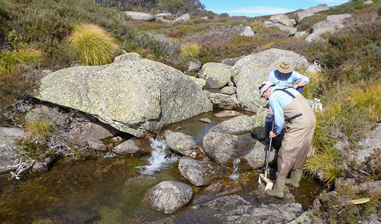 Scientists testing water quality, Kosciuszko National Park. Photo: Jane Miller