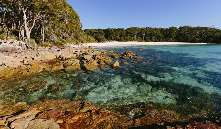 Greenfields Beach, Jervis Bay National Park. Photo: David Finnegan