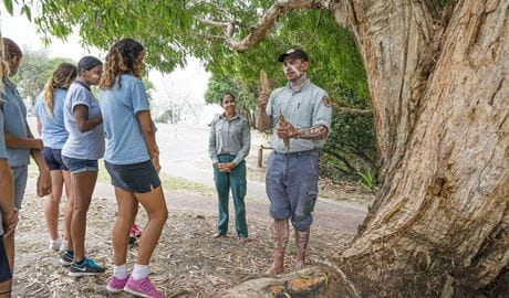 An NPWS educator talks about paperbark with high school students, Arakwal National Park. Photo: David Young