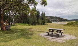 Bonnie Vale campground, Royal National Park. Photo: Andrew Richards