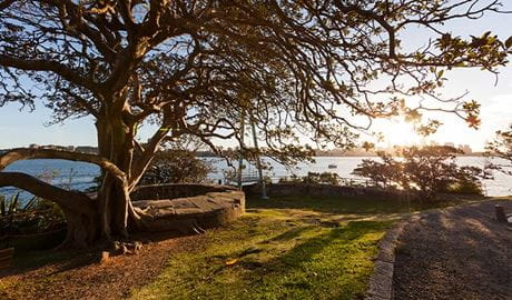 Bradley's Head, Sydney Harbour National Park. Photo: David Finnegan