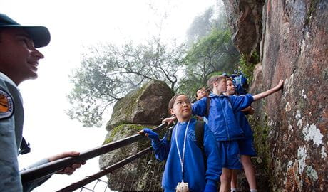 Students on a tour of Katoomba, Blue Mountains National Park. Photo: Nick Cubbin