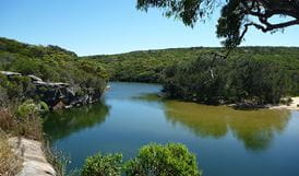 Wattamolla picnic area, Royal National Park. Photo: Understand Down Under