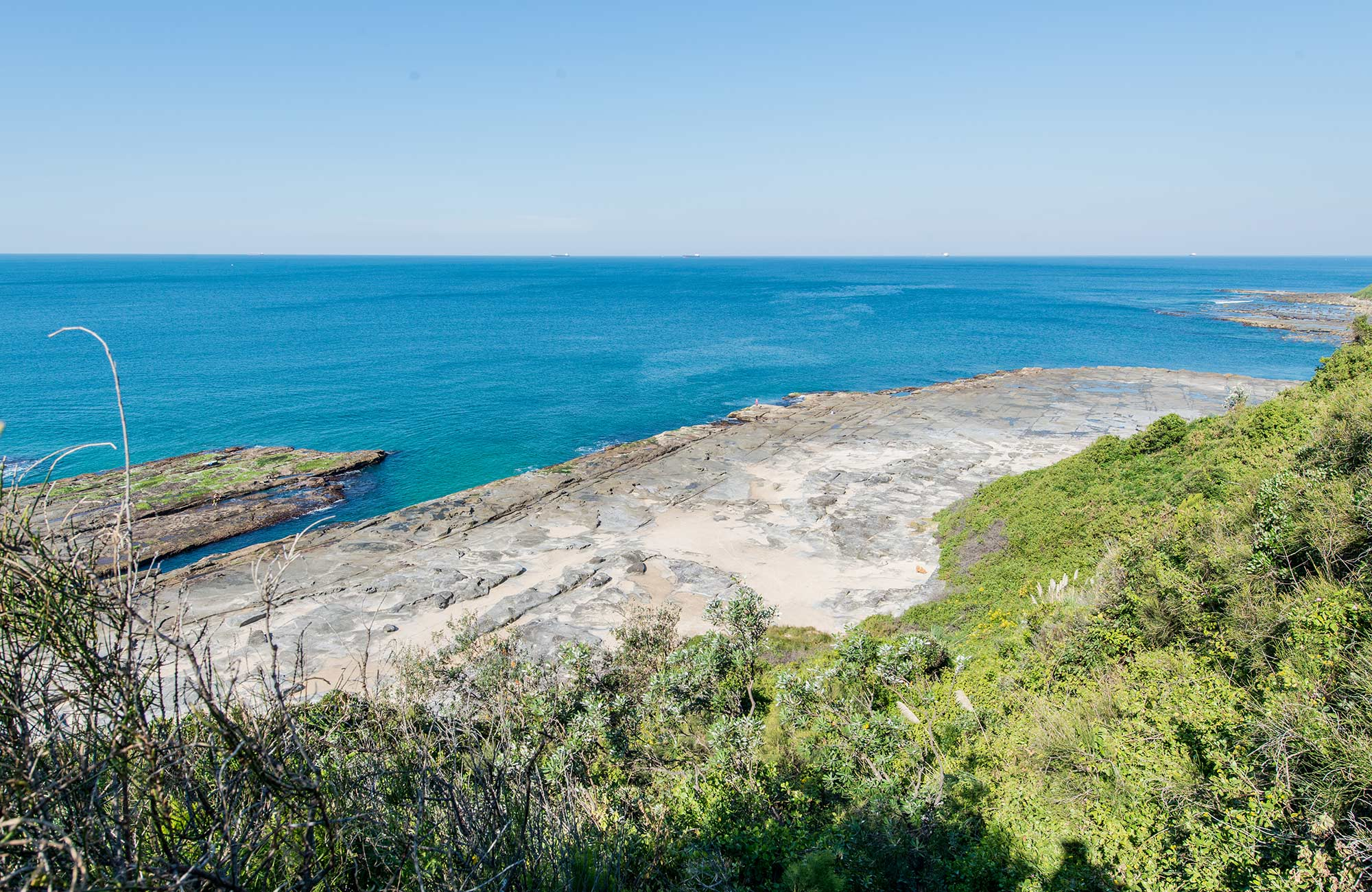 Burwood trail, Glenrock Conservation Area. Photo: John Spencer