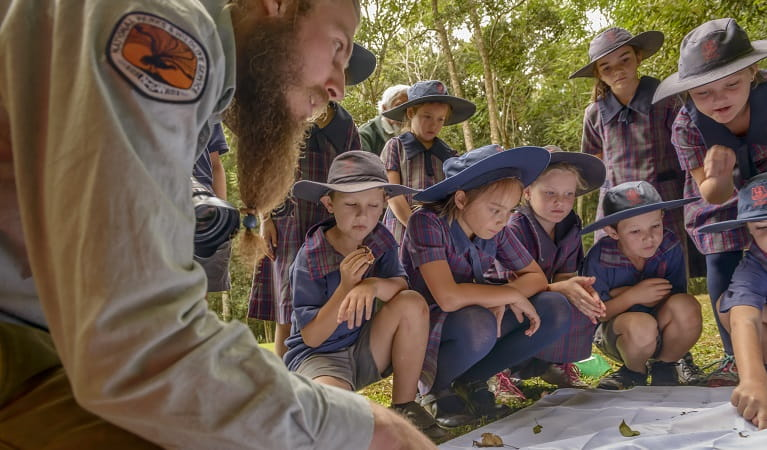 Scientific investigation, guided by national parks staff on a school excursion. Photo: J. Spencer/OEH