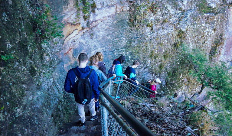 Students walking at Katoomba Falls on a school excursion in Blue Mountains National Park. Photo: Tanja Bruckner
