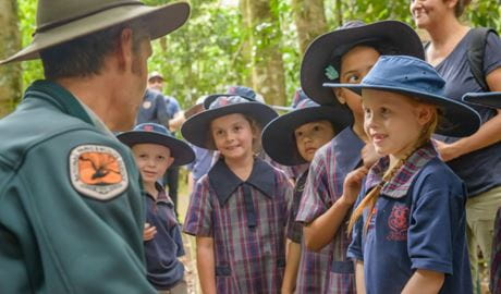 Students on a school excursion in Dorrigo National Park. Photo: John Spencer/ OEH