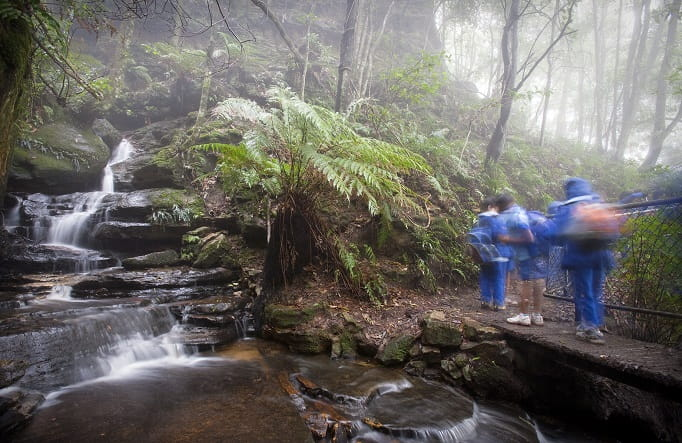 Students on a school excursion in Blue Mountains National Park. Photo: Nick Cubbin/OEH
