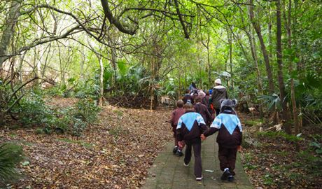 Students walking along a paved track on a Minnamurra Rainforest school excursion, Budderoo National Park. Photo: Meagan Vella/OEH